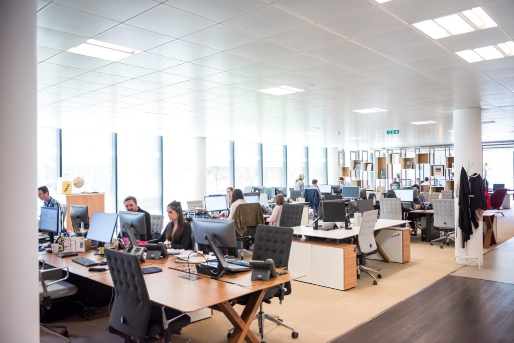 large open office with accommodations for blind and low vision employees